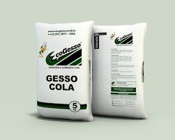 Gesso Cola 5 Kg